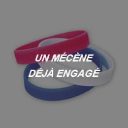 Visuels Bracelets Mécènes déjà engagés